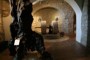 Museo di Pastena